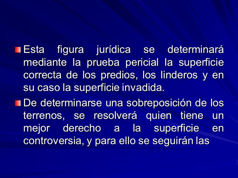 Esta figura jurídica se determinará mediante la prueba pericial la superficie correcta de los predios, los linderos y en su caso la superficie invadida.