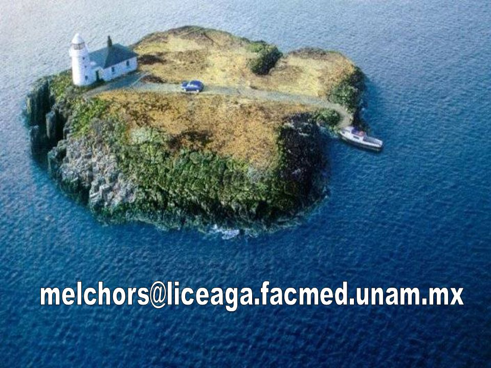 melchors@liceaga.facmed.unam.mx