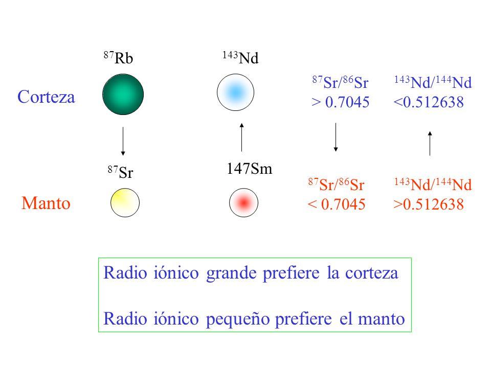Radio iónico grande prefiere la corteza
