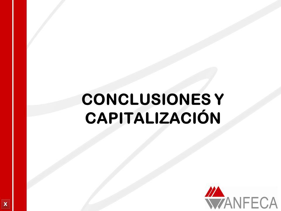CONCLUSIONES Y CAPITALIZACIÓN