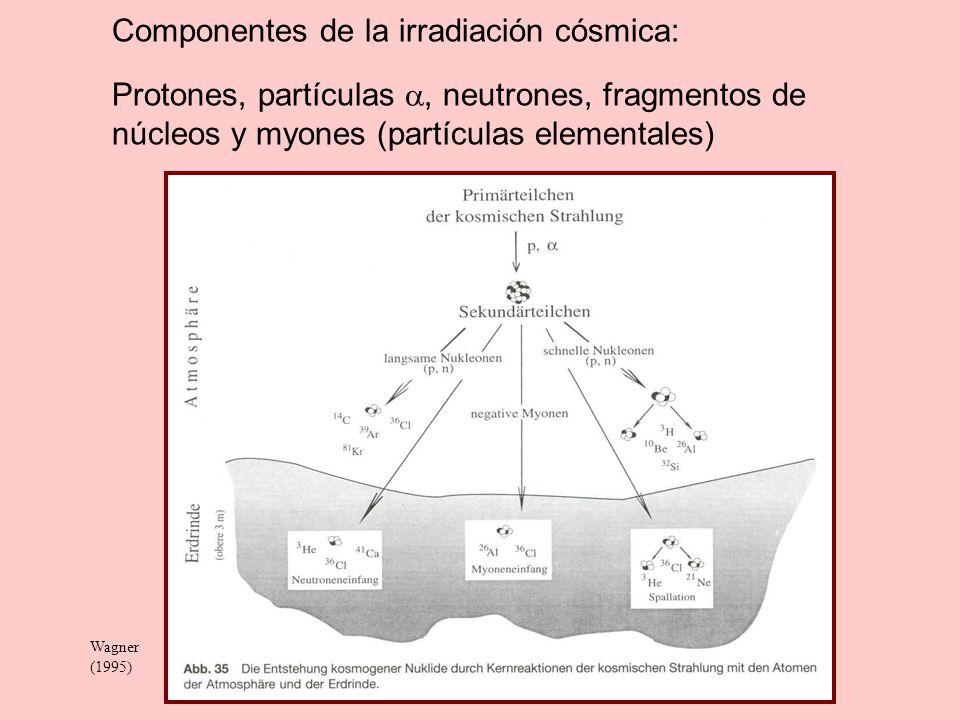 Componentes de la irradiación cósmica: