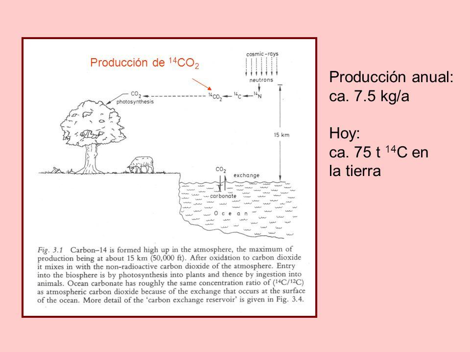 Producción anual: ca. 7.5 kg/a Hoy: ca. 75 t 14C en la tierra