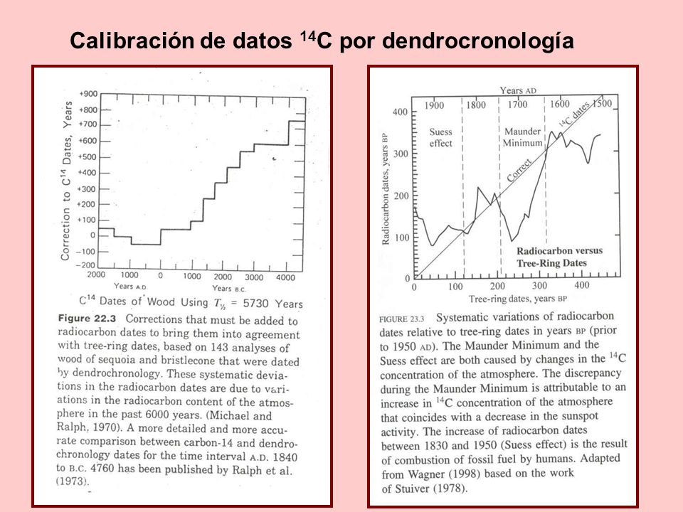 Calibración de datos 14C por dendrocronología