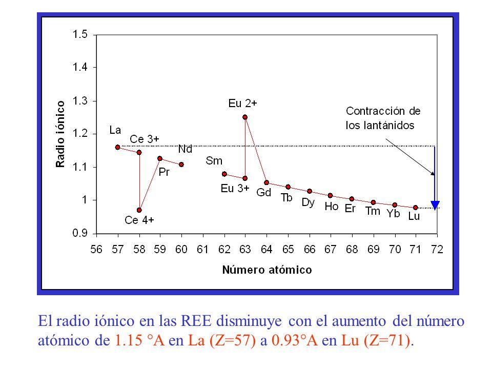 El radio iónico en las REE disminuye con el aumento del número atómico de 1.15 °A en La (Z=57) a 0.93°A en Lu (Z=71).