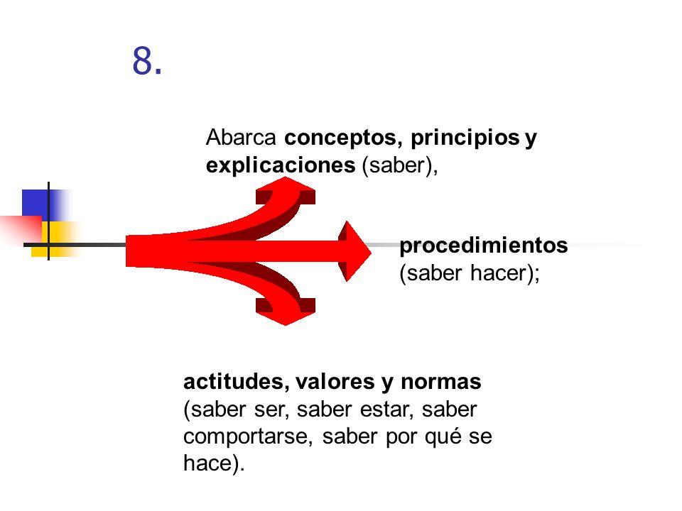 8. Abarca conceptos, principios y explicaciones (saber),