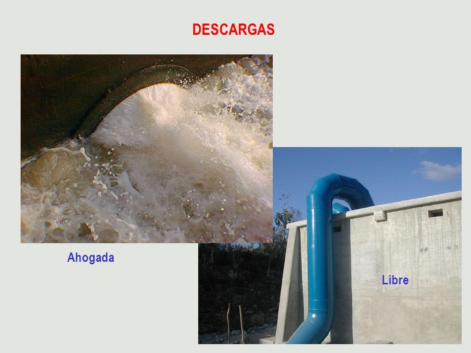 DESCARGAS Ahogada Libre