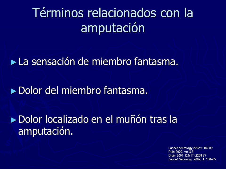 Términos relacionados con la amputación