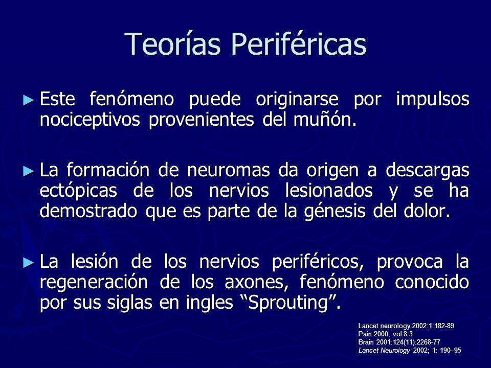 Teorías Periféricas Este fenómeno puede originarse por impulsos nociceptivos provenientes del muñón.