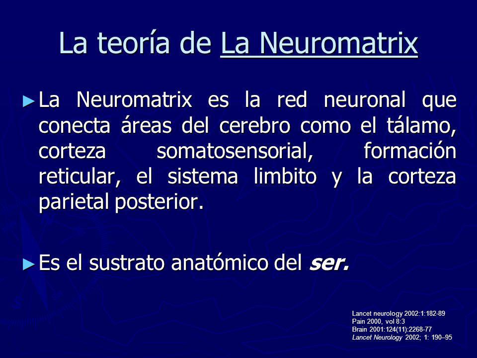 La teoría de La Neuromatrix