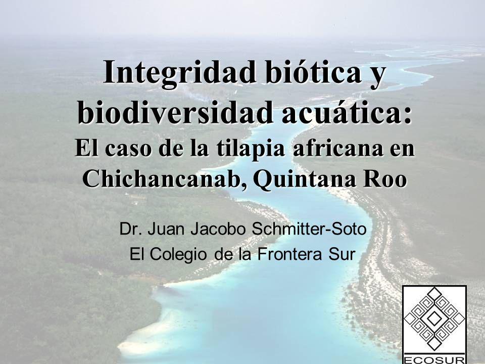 Dr. Juan Jacobo Schmitter-Soto El Colegio de la Frontera Sur