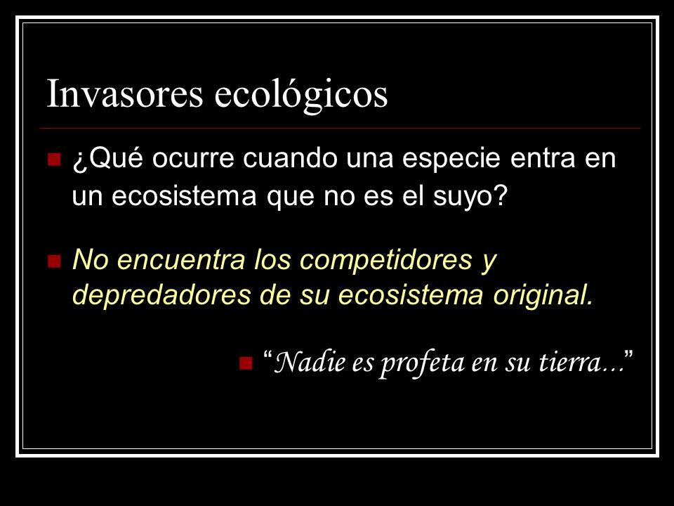 Invasores ecológicos ¿Qué ocurre cuando una especie entra en un ecosistema que no es el suyo
