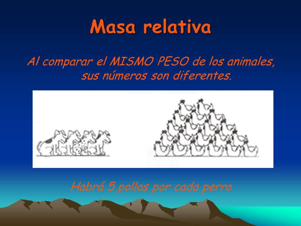 Masa relativa Al comparar el MISMO PESO de los animales, sus números son diferentes.