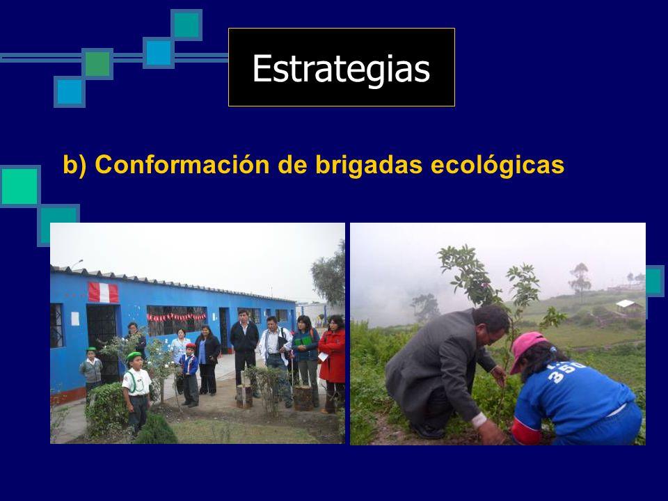Estrategias b) Conformación de brigadas ecológicas