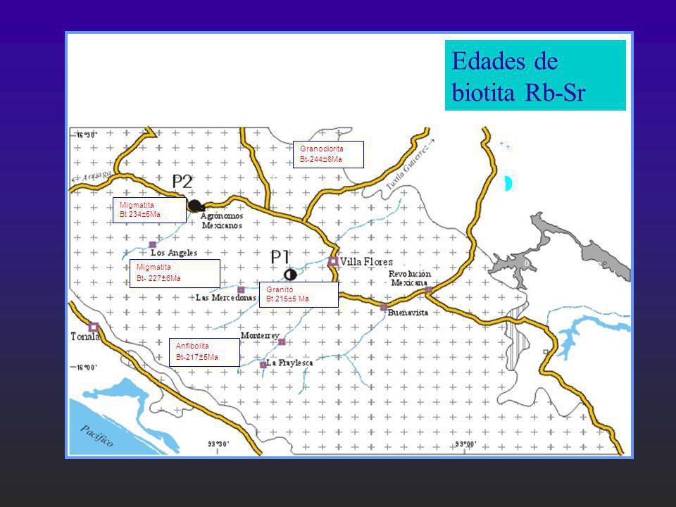 Edades de biotita Rb-Sr