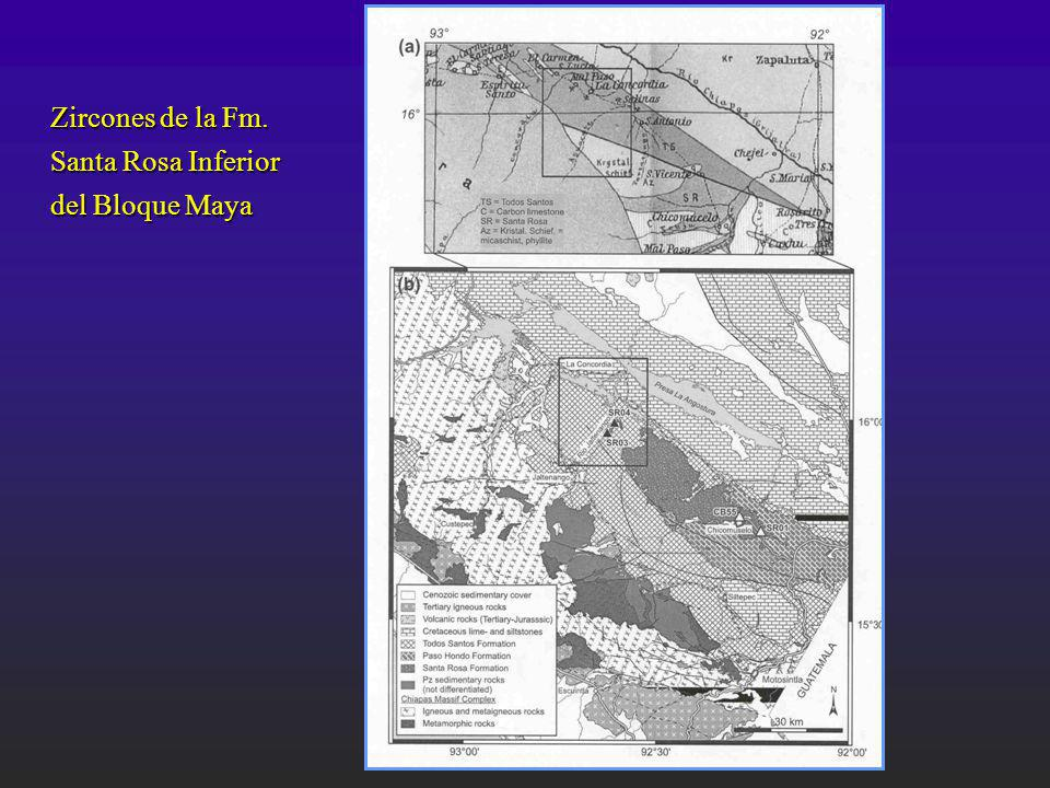 Zircones de la Fm. Santa Rosa Inferior del Bloque Maya