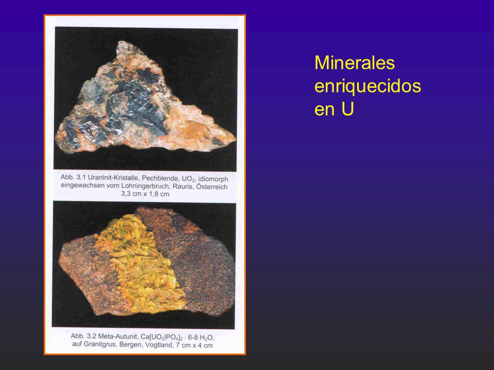 Minerales enriquecidos