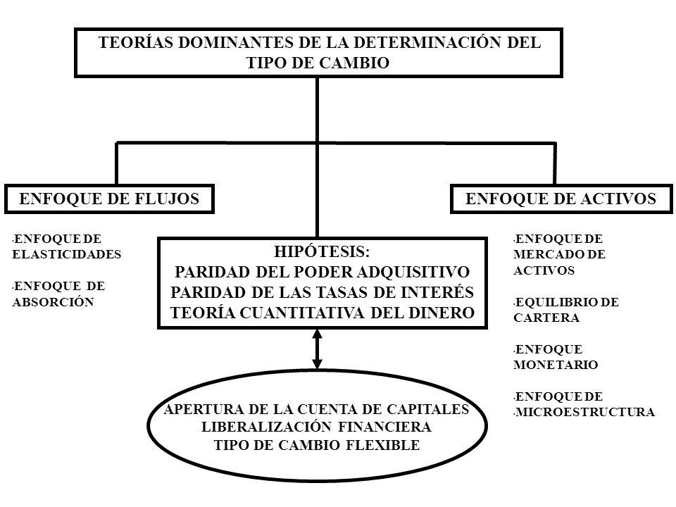 TEORÍAS DOMINANTES DE LA DETERMINACIÓN DEL TIPO DE CAMBIO
