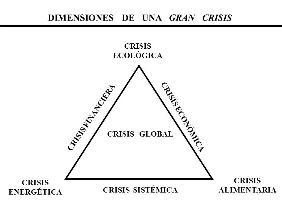 DIMENSIONES DE UNA GRAN CRISIS