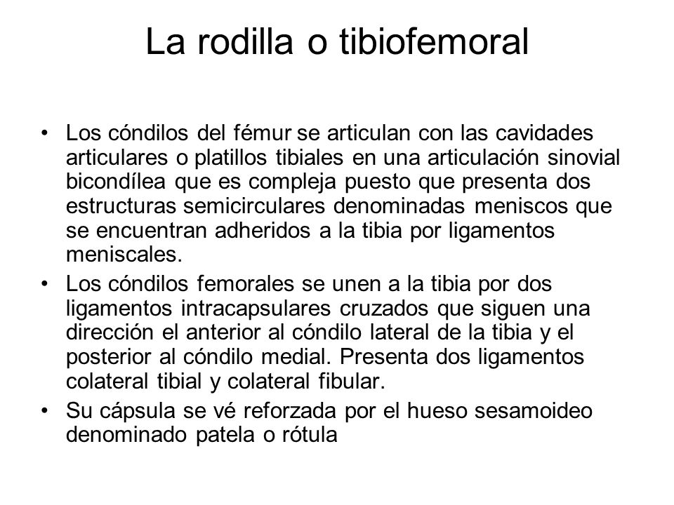 La rodilla o tibiofemoral