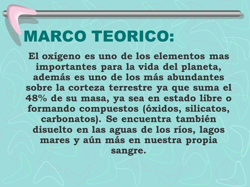 MARCO TEORICO: