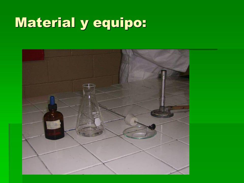 Material y equipo: