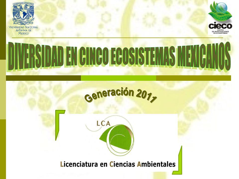 DIVERSIDAD EN CINCO ECOSISTEMAS MEXICANOS