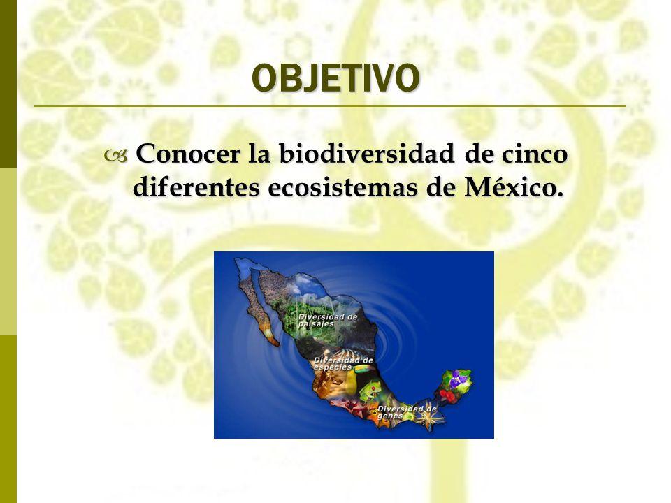 Conocer la biodiversidad de cinco diferentes ecosistemas de México.