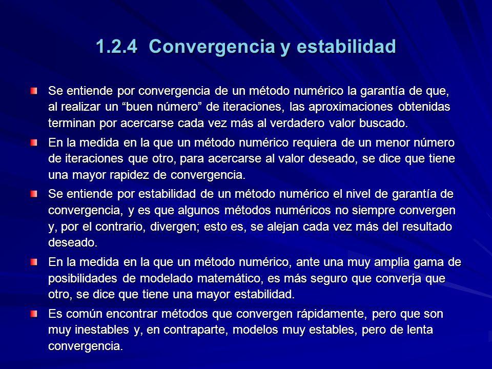 1.2.4 Convergencia y estabilidad