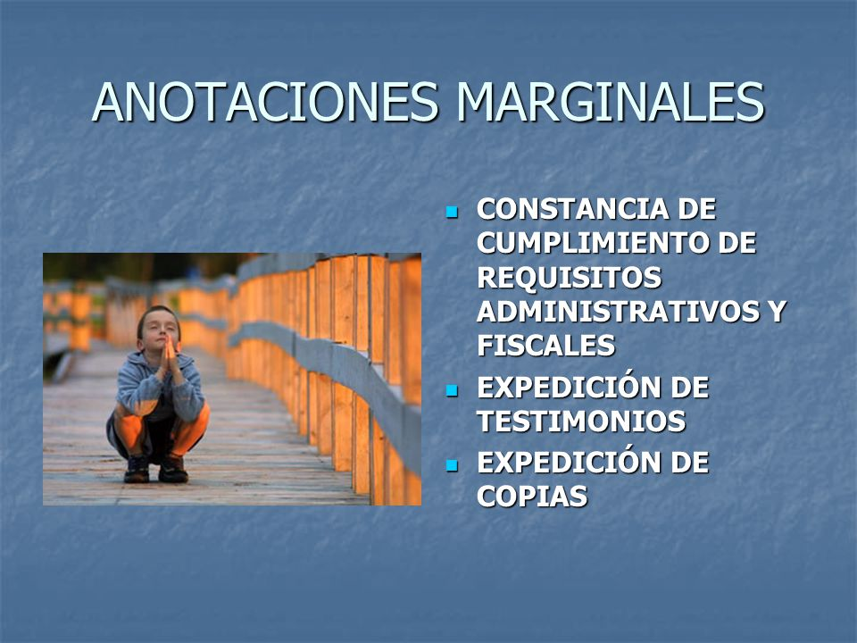 ANOTACIONES MARGINALES