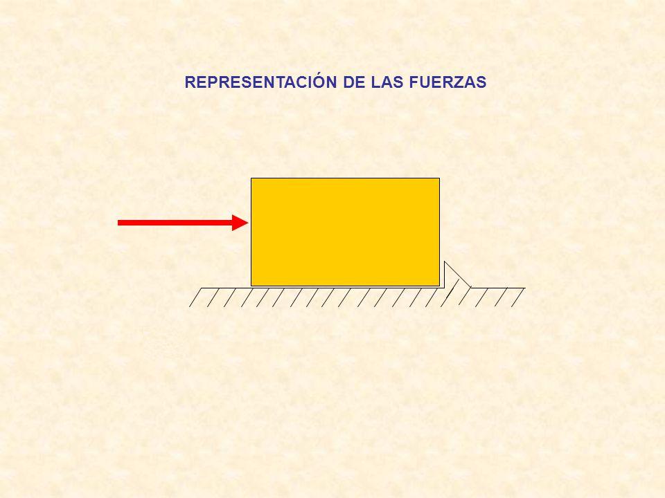 REPRESENTACIÓN DE LAS FUERZAS