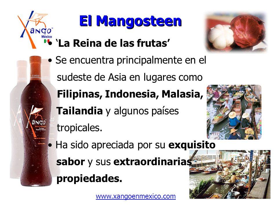 El Mangosteen 'La Reina de las frutas'