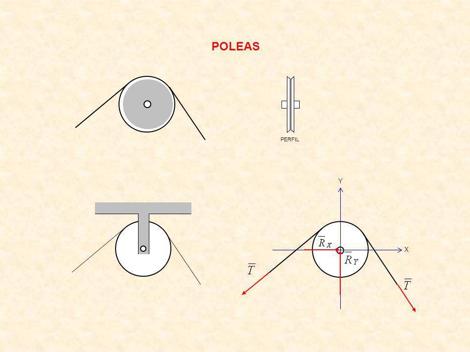 POLEAS PERFIL X Y