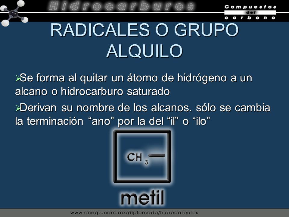 RADICALES O GRUPO ALQUILO