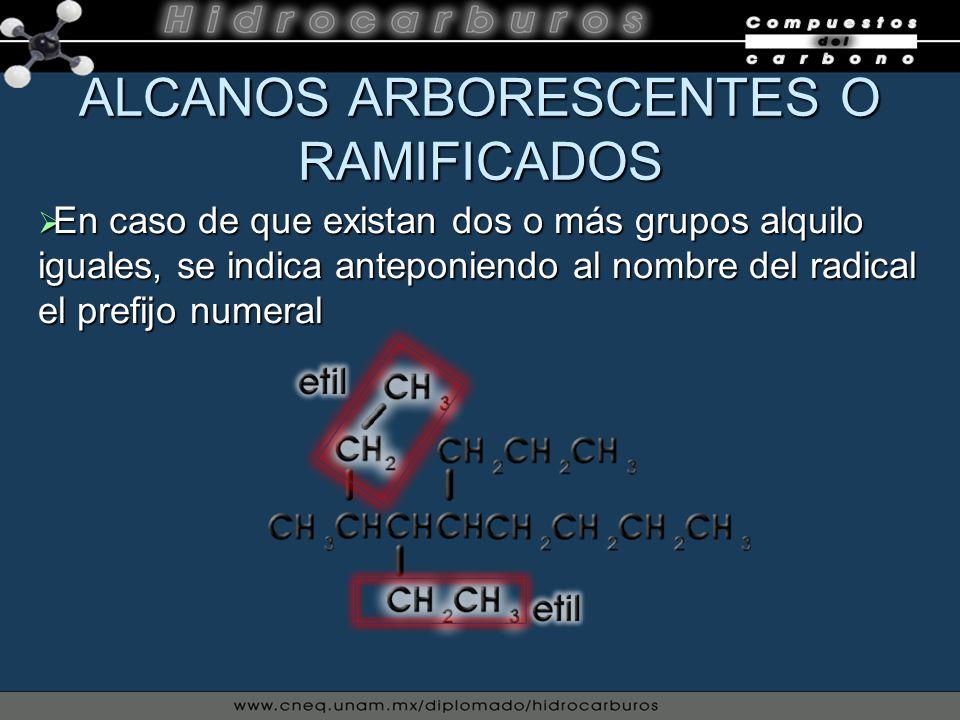 ALCANOS ARBORESCENTES O RAMIFICADOS