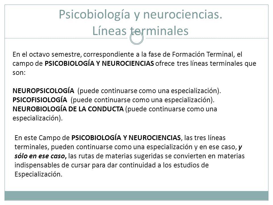 Psicobiología y neurociencias. Líneas terminales