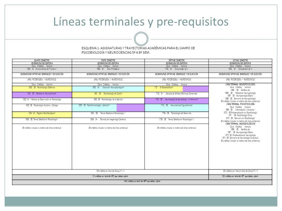Líneas terminales y pre-requisitos