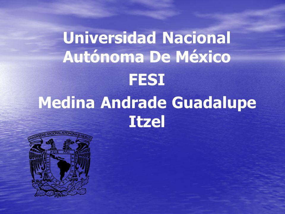 Universidad Nacional Autónoma De México Medina Andrade Guadalupe Itzel