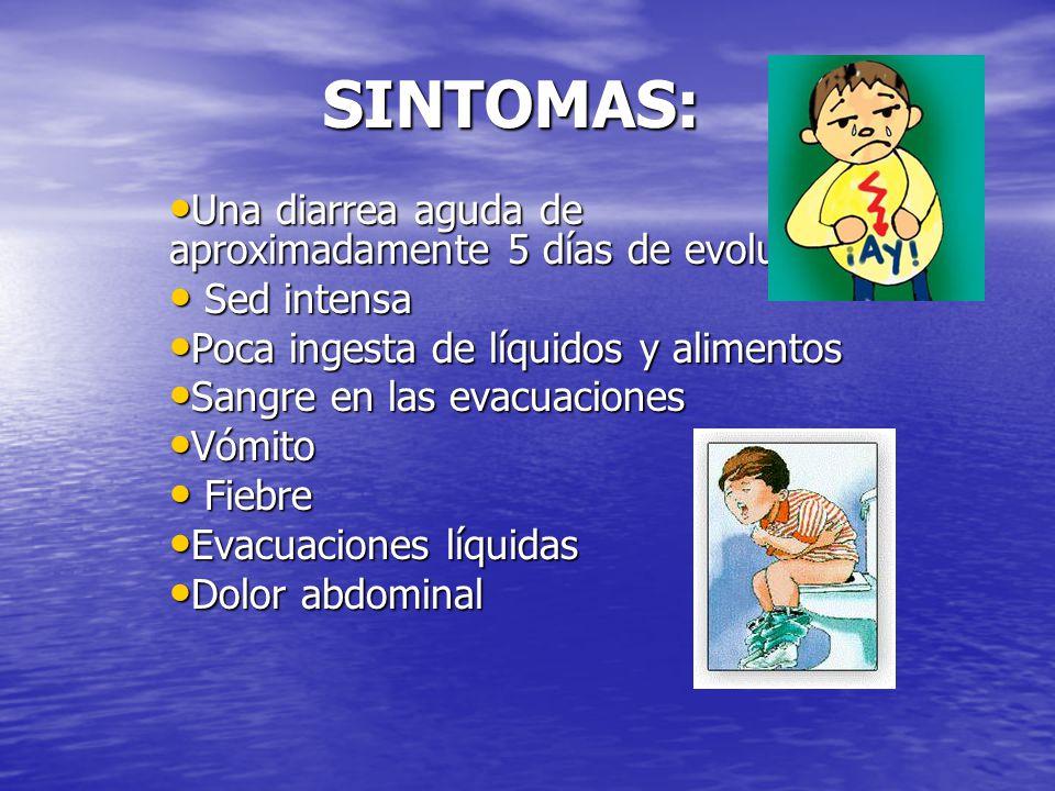 SINTOMAS: Una diarrea aguda de aproximadamente 5 días de evolución