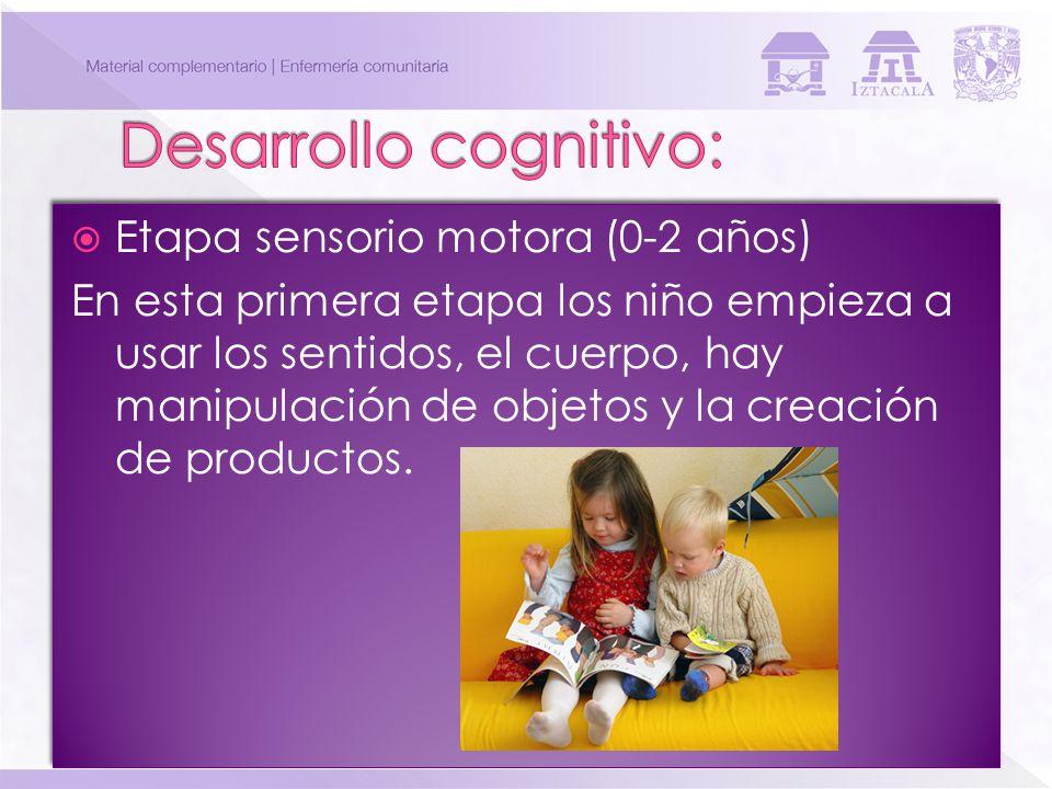 Desarrollo cognitivo: