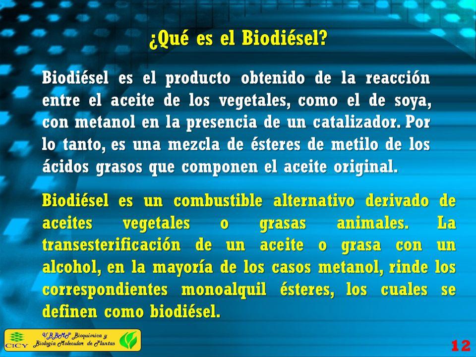 ¿Qué es el Biodiésel