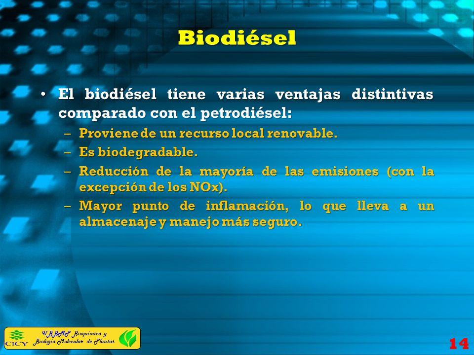Biodiésel El biodiésel tiene varias ventajas distintivas comparado con el petrodiésel: Proviene de un recurso local renovable.