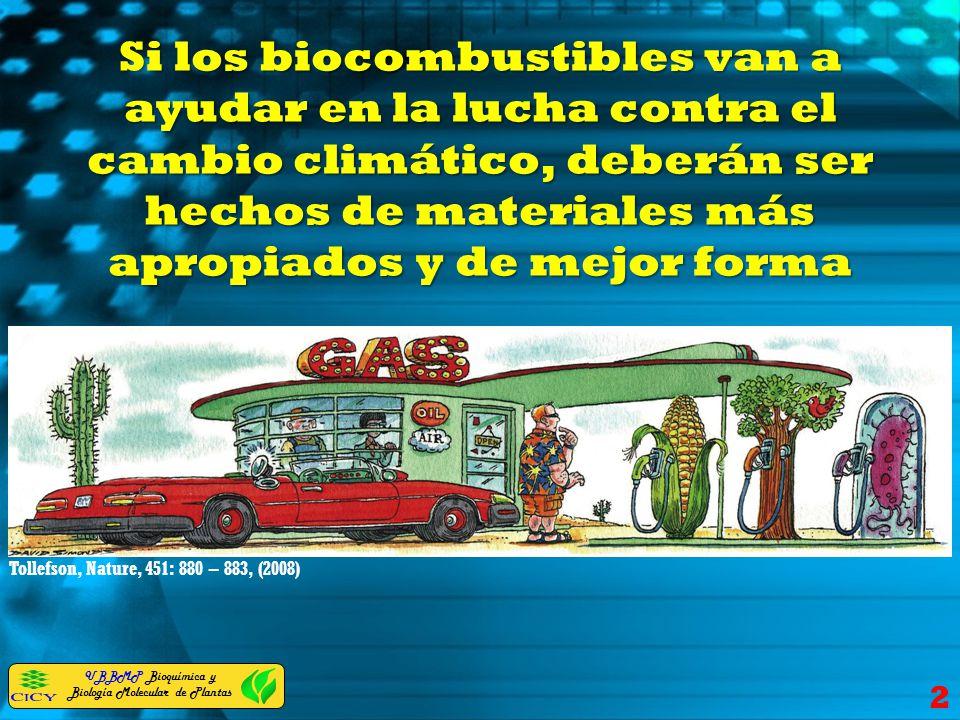 Si los biocombustibles van a ayudar en la lucha contra el cambio climático, deberán ser hechos de materiales más apropiados y de mejor forma