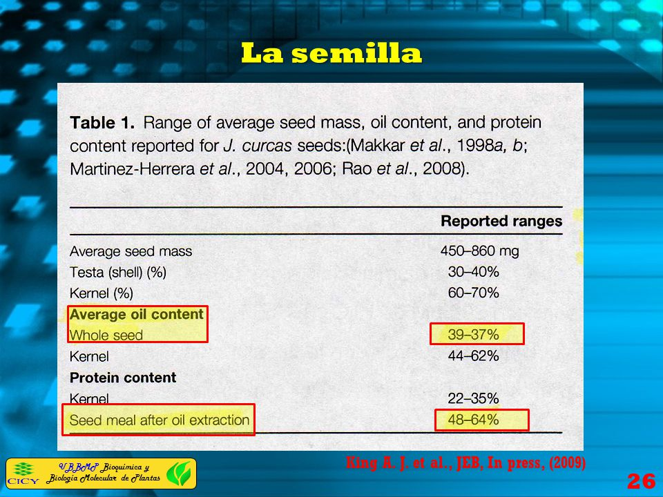 La semilla King A. J. et al., JEB, In press, (2009)