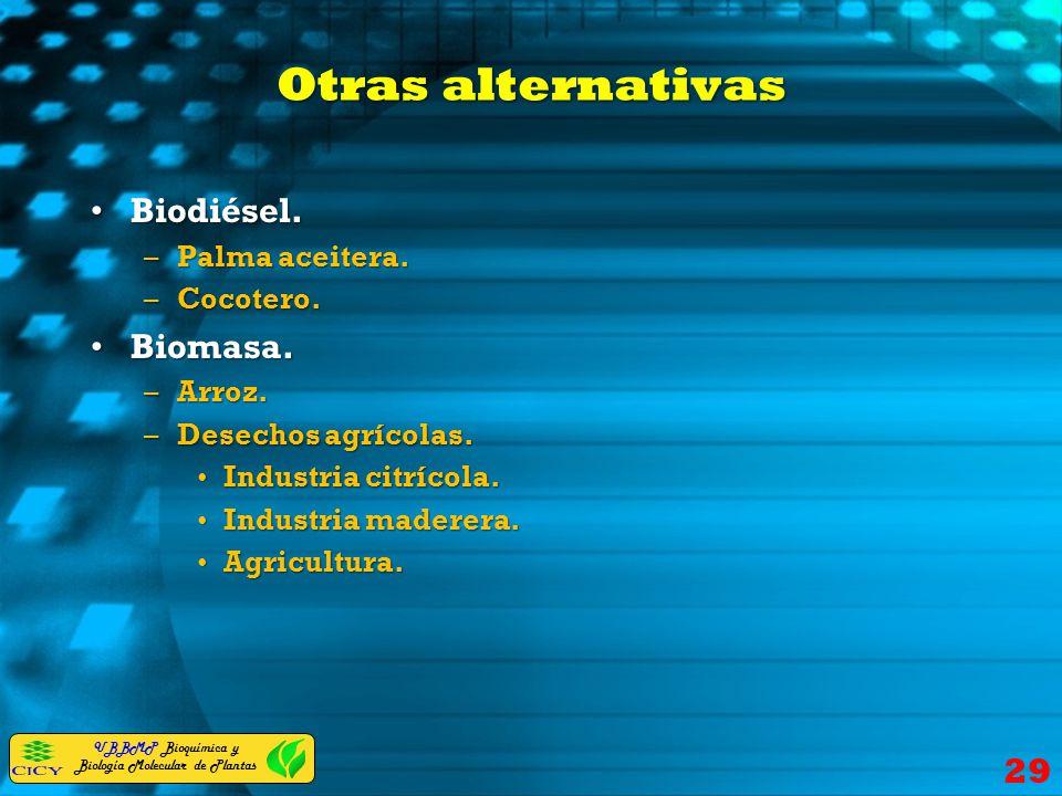 Otras alternativas Biodiésel. Biomasa. Palma aceitera. Cocotero.