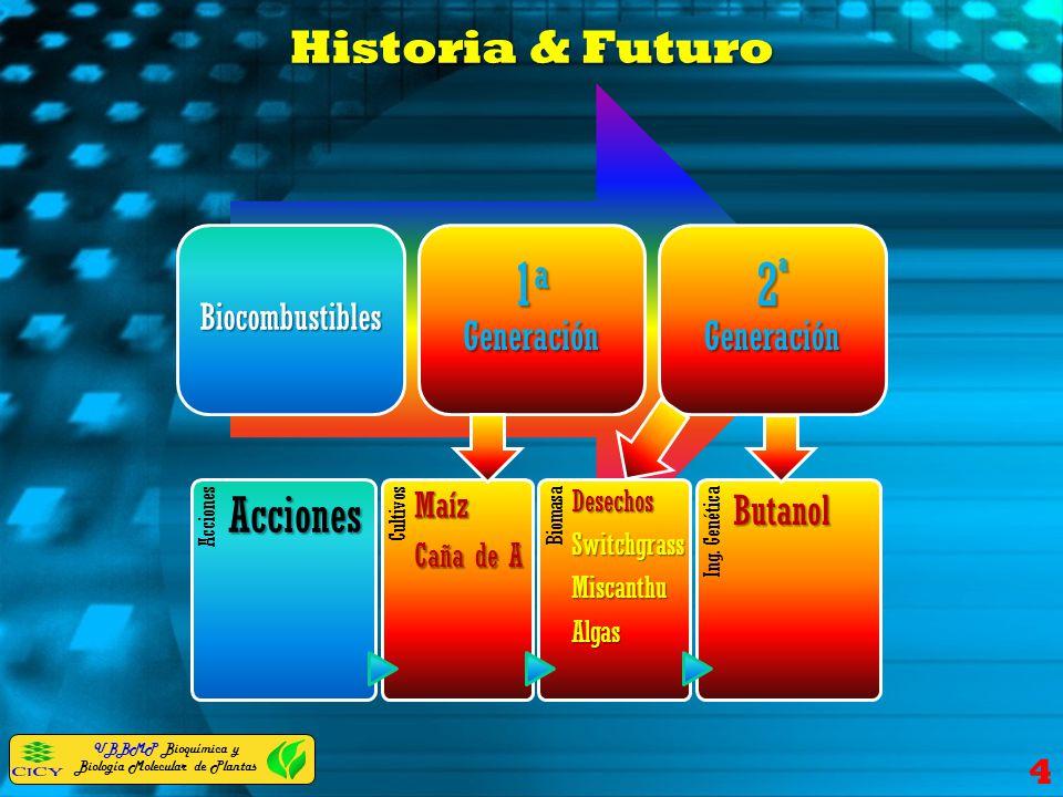 1a Generación 2ª Generación Historia & Futuro Butanol Maíz Caña de A