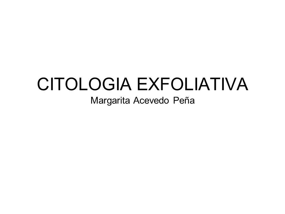 CITOLOGIA EXFOLIATIVA Margarita Acevedo Peña
