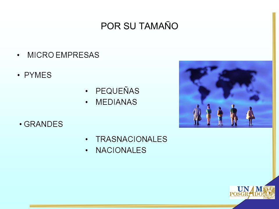 POR SU TAMAÑO MICRO EMPRESAS PYMES PEQUEÑAS MEDIANAS GRANDES