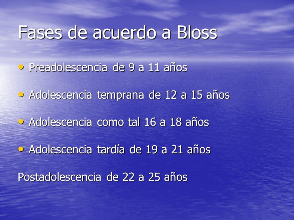 Fases de acuerdo a Bloss