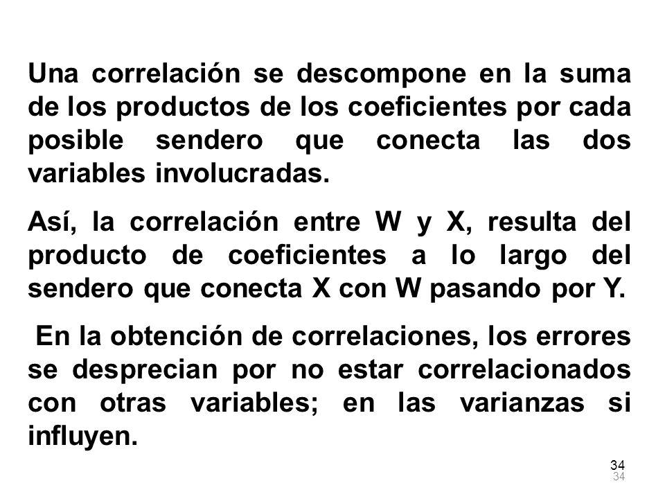 Una correlación se descompone en la suma de los productos de los coeficientes por cada posible sendero que conecta las dos variables involucradas.