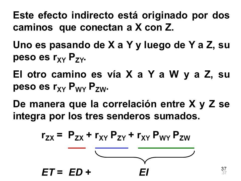 Uno es pasando de X a Y y luego de Y a Z, su peso es rXY PZY.